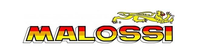 Въздушни филтри MALOSSI