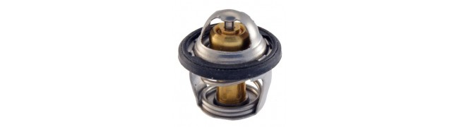 Термостат / Датчик за вода